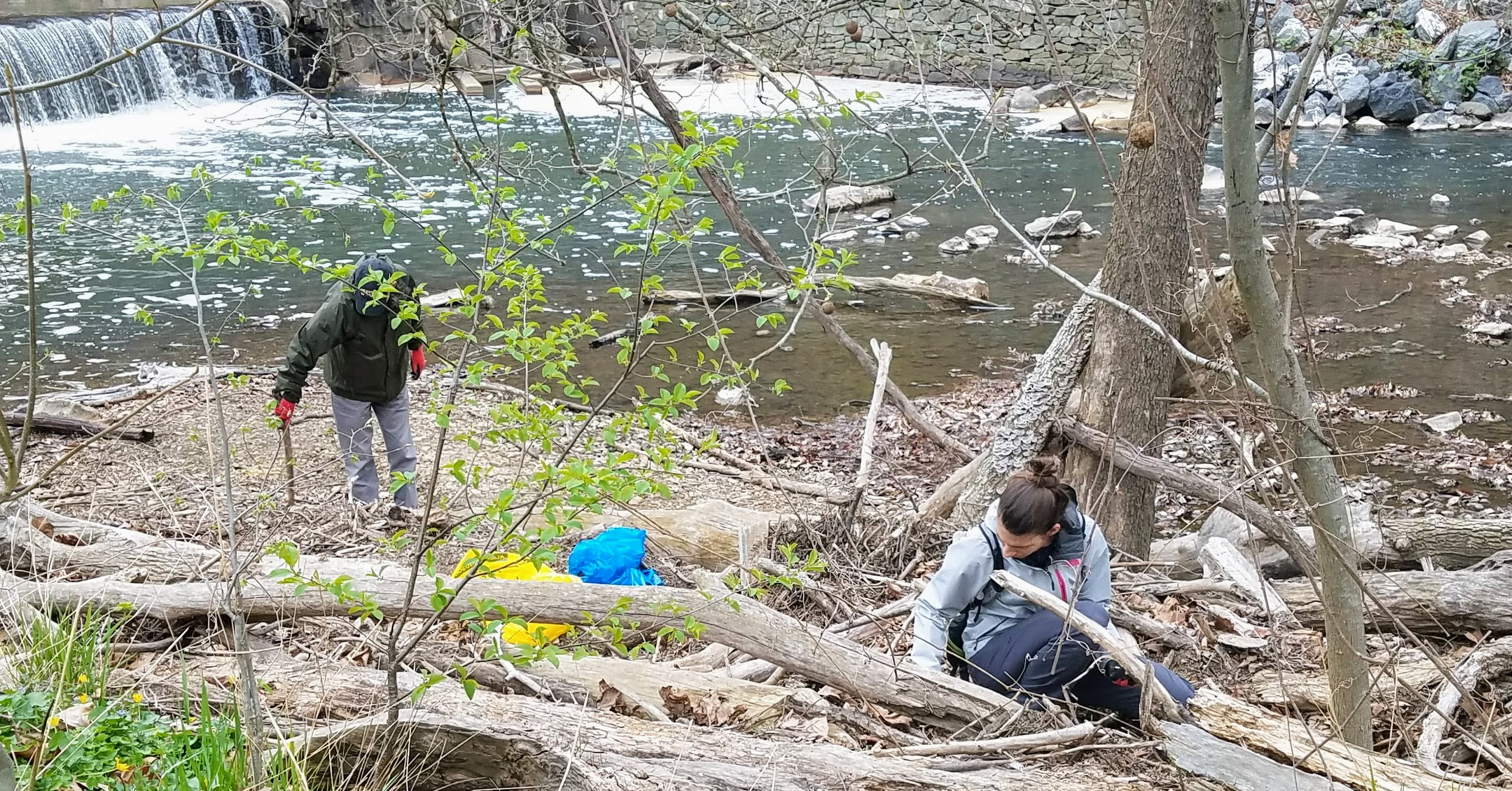 Rock Creek Cleanup Campaign